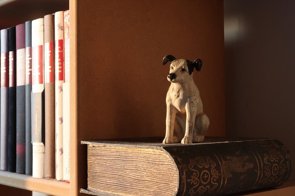 Bøger og figur i bogreol